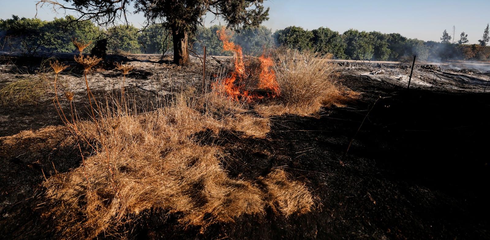 שריפה שפרצה בעוטף עזה בעקבות הפרחת בלוני תבערה / צילום: Reuters, AMIR COHEN