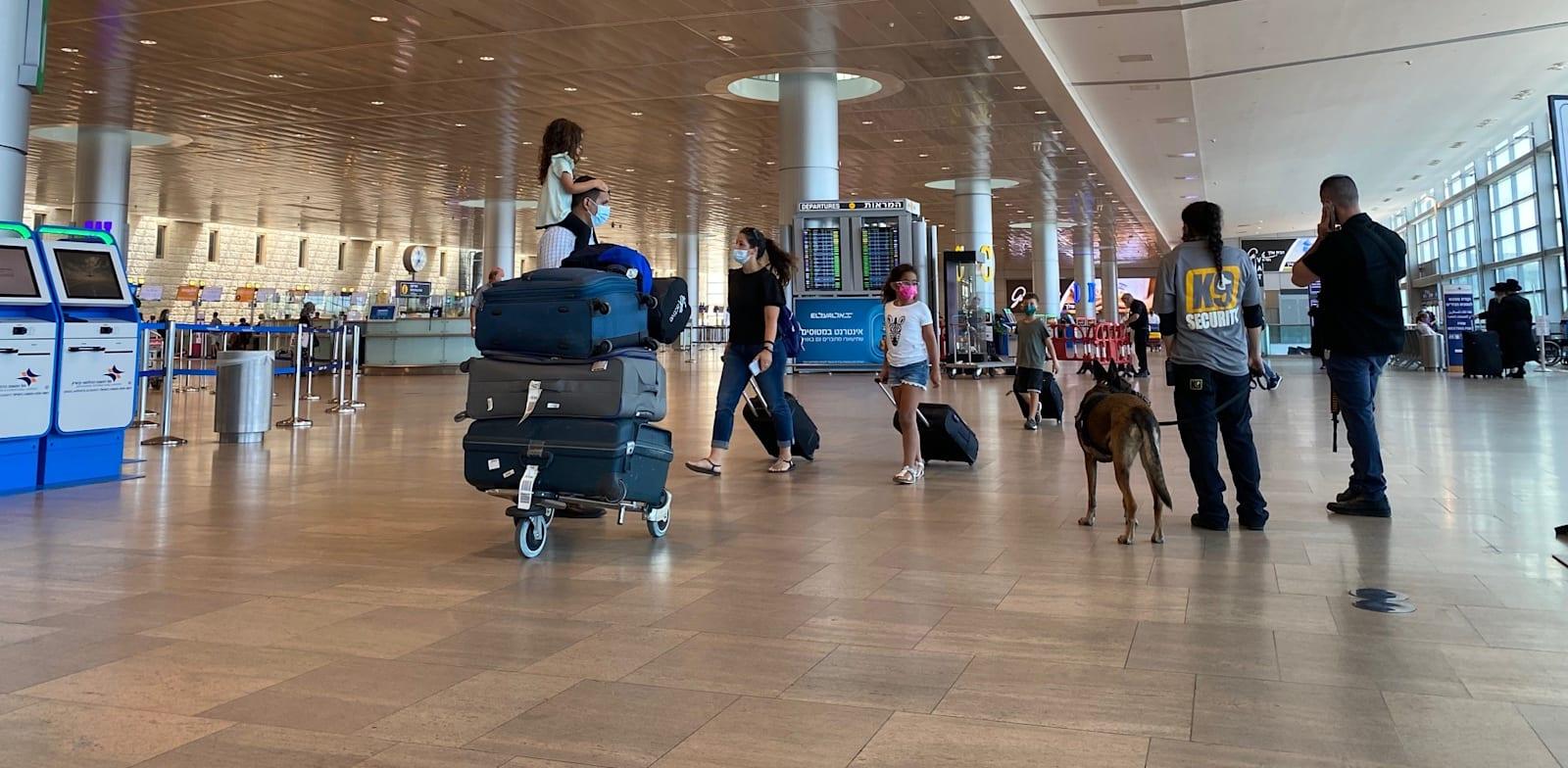 נמל התעופה בן גוריון / צילום: מיכל רז-חיימוביץ'