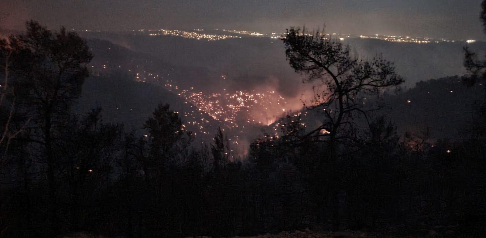 מוקדי השריפה בנחל צובה בין הר טייסים להר איתן / צילום: רועי שטראוס, רשות הטבע והגנים