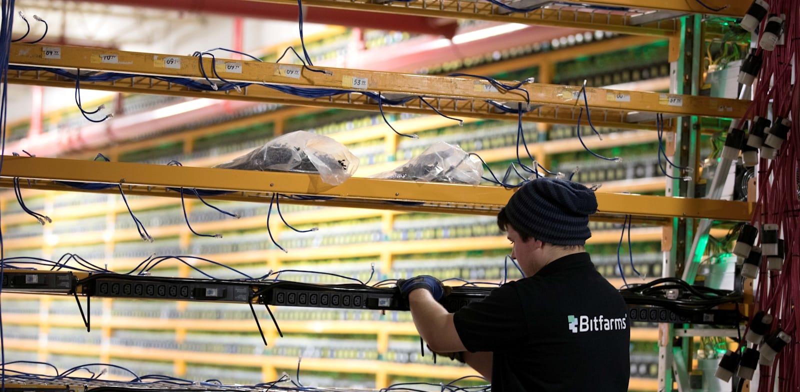 עובד בחברת כריית מטבעות קריפטו מכין תשתיות לקליטת מחשבים חדשים, קנדה / צילום: Reuters, CHRISTINNE MUSCHI