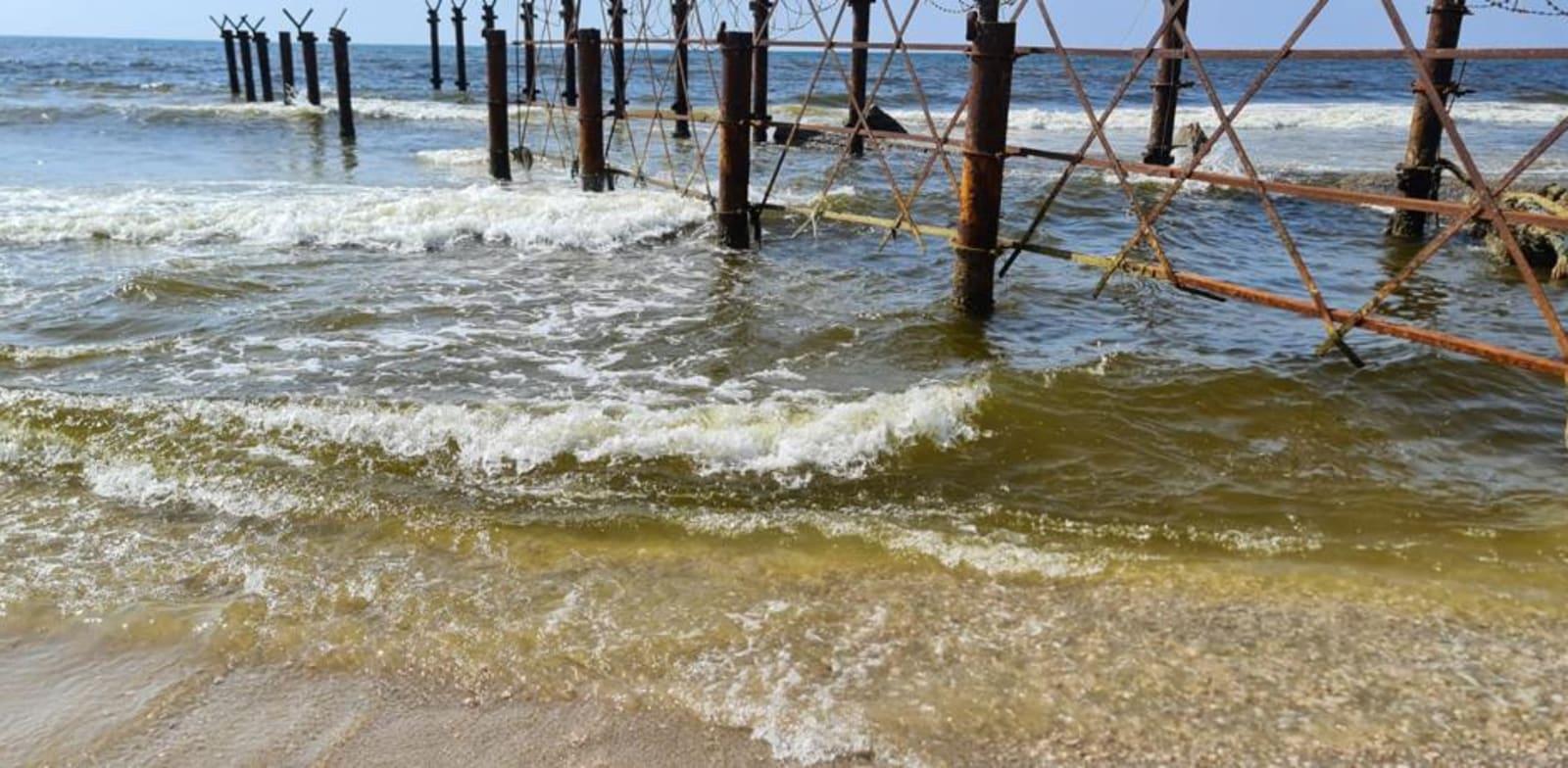 מים צהובים בחוף פלמחים / צילום: תמונה פרטית
