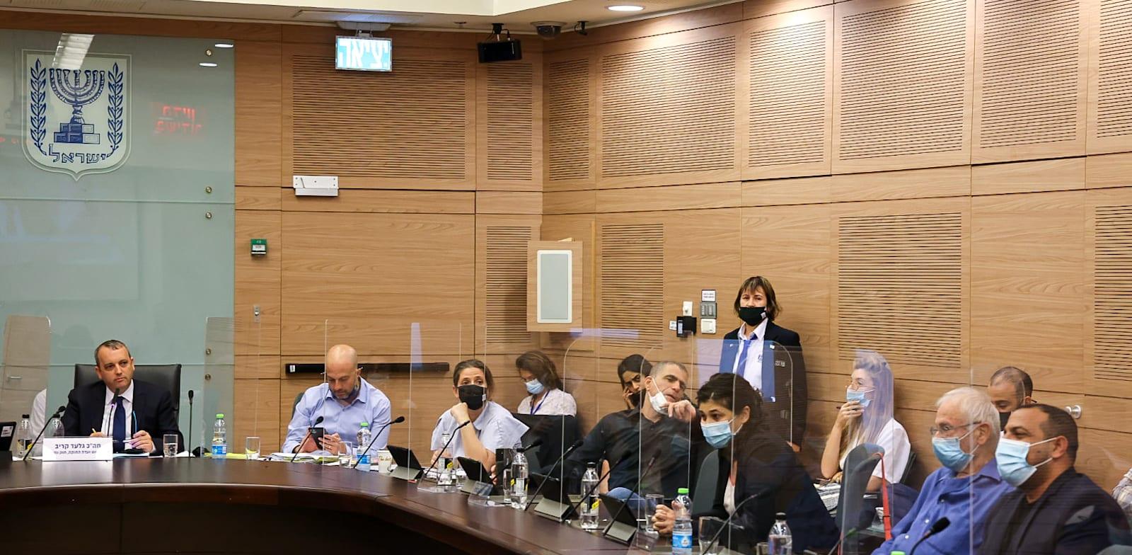 ועדת החוקה, חוק הרגולציה / צילום: נועם מושקוביץ, דוברות הכנסת