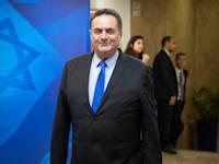 ישראל כץ / צילום: אמיל סלמן-הארץ