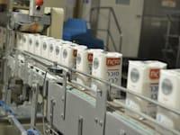 מפעל סוגת - סוכר -  קרית גת / צילום: תמר מצפי