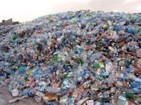 """בקבוקי פלסטיק למחזור / צילום: יח""""צ"""