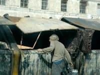 עוני / צילום: תמר מצפי