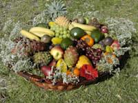 סלסלת פירות / צילום: תמר מצפי