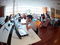 עבודה במשרד סטארט-אפ / צילום: Shutterstock, dotshock