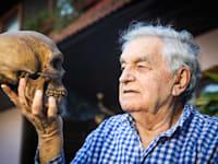 פרופ' יואל רק, חוקר אבולוציה / צילום: שלומי יוסף