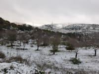 רכס בלבן מכוסה בשלג לאחר הסערה / צילום: דודו בן אור, רשות הטבע והגנים