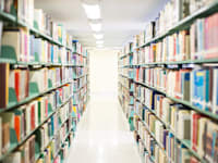 ספרייה ציבורית / אילוסטרציה: Shutterstock