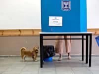 קלפי בבחירות הקודמות. הנטייה היא למצוא צידוקים רציונליים לבחירה רנדומלית / צילום: Associated Press, Corinna Kern