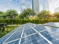 אנרגיה ירוקה / צילום: Shutterstock, asharkyu
