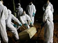 בית קברות בסאו פאולו. ההלוויות נמשכות אל תוך הלילה / צילום: Associated Press, Nelson Antoine