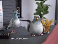 פרסומת ביטוח ישיר / צילום: יחצ רן דנינו