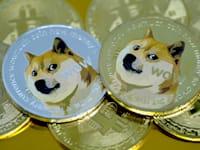 מטבע דוגקוין / צילום: Reuters, Yuriko Nakao/AFLO