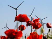 טורבינות מופעלות רוח בגרמניה. האיחוד האירופי החל לאכוף רגולציה בהשקעות סביבתיות / צילום: Associated Press, Ferdinand Ostrop