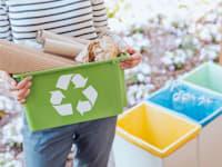 תעשיית מיחזור תחרותית ומתקדמת יכולה לתת מענה עסקי כלכלי לבעיה סביבתית ולהשיא רווח למשק הישראלי / צילום: Shutterstock, Photographee.eu