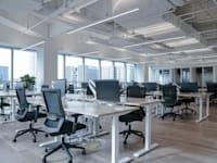 שוק העבודה מגיב באיטיות כמו אחרון הדינוזאורים / צילום: Shutterstock, August_0802