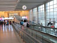 נתב''ג. בחודש הבא תיירים יוכלו להגיע לישראל / צילום: יוסי זמיר