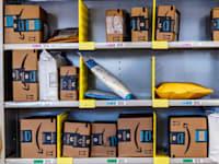 אמזון תכה שוב את התחזיות? / צילום: Shutterstock, Jonathan Weiss