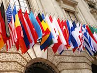 דגלי מדינות ה-OECD / צילום: Shutterstock