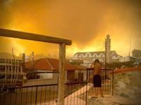 גל שריפות בקפריסין / צילום: Reuters, ANDREA ANASTASIOU