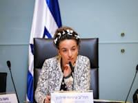 הוועדה המסדרת על הקמת ועדות קבועות, היום / צילום: נועם מושקוביץ, דוברות הכנסת