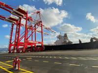 נמל המפרץ / צילום: חברת MSC