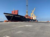 האונייה MSC SHEILA שעגנה אתמול בנמל הפרטי באשדוד / צילום: MSC