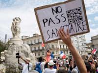 הפגנות בצרפת נגד התו הירוק / צילום: Reuters, Nicolas Portnoi / Hans Lucas