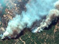 השריפות בטורקיה, החודש / צילום: Associated Press
