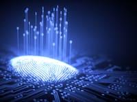 טביעת אצבע דיגיטלית אמינה ומאובטחת היא הכרח / צילום: Shutterstock, ktsdesign