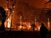 שריפות ביוון השבוע בעקבות גל החום הקיצוני / צילום: Reuters, Angelos Tzortzinis