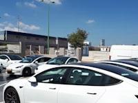 עומס של מכוניות טסלה במוסך של בפתח תקווה / צילום: בר - אל