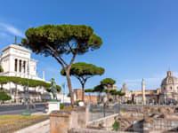 רומא. איטליה רשמה התאוששות במגזר התיירות / צילום: Shutterstock, travelview