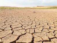 יש להתייחס בחוק האקלים להתמודדות עם תופעת המדבור / צילום: Shutterstock, alvarobueno