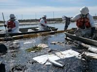 מנסים להשתלט על דליפת הנפט ולנקות את המים / צילום: Associated Press, Ringo H.W. Chiu