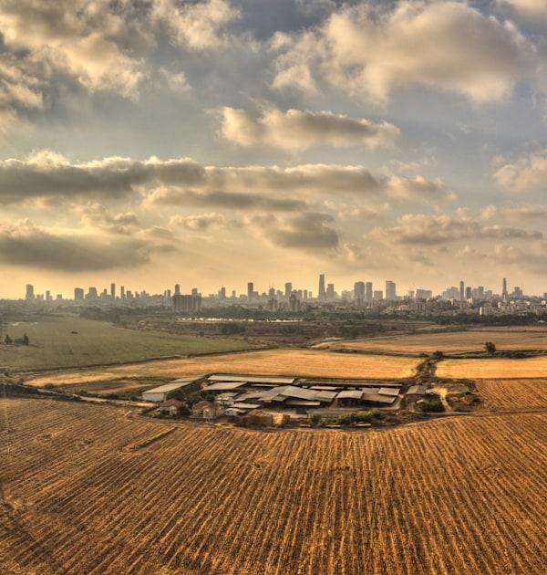הסתרת מידע והטעיית הציבור בתחום הסחר בקרקע חקלאית / צילום: Shutterstock