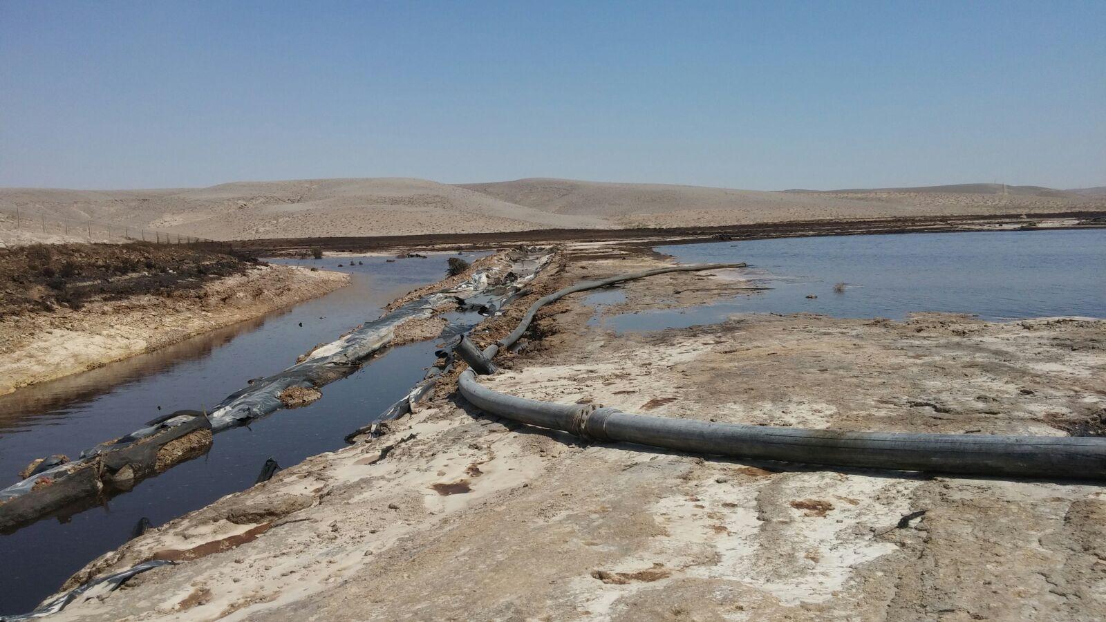 זיהום נחל אשלים / צילום: עודד נצר - המשרד להגנת הסביבה