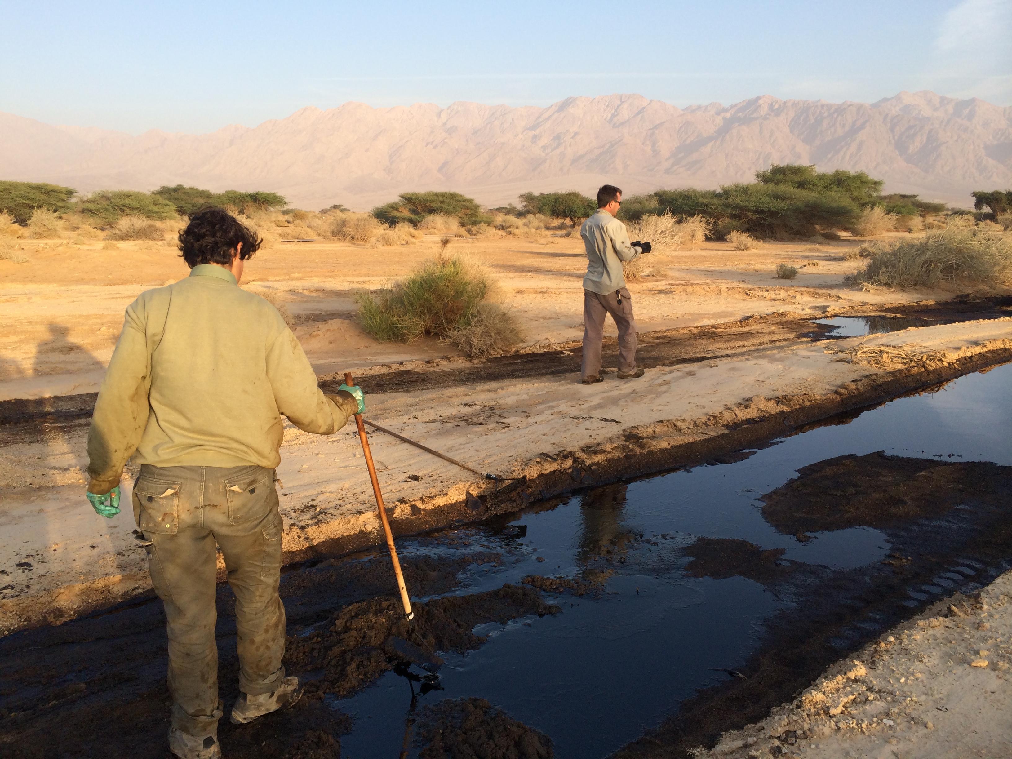 זיהום פיצוץ צינור נפט של קצא''א בעברונה / צילום: רשות הטבע והגנים