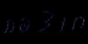 כתב היד של רן בליצר