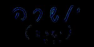כתב היד של זאב רוטשטיין