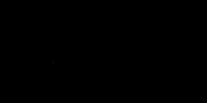 כתב היד של רחל הבר