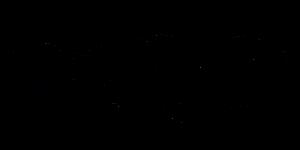 כתב היד של מאור זגורי