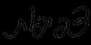 כתב היד של אבנר ישר