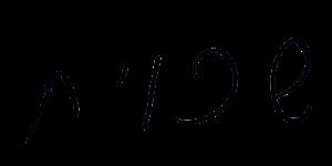 כתב היד של רייסנר