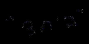כתב היד של מואנד ריאן