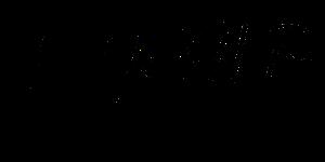 כתב היד של יוסי ואסה