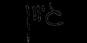 כתב היד של אייל מליס